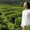 Tại sao phụ nữ uống trà xanh có lợi hơn nam giới