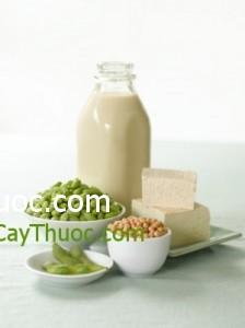 Nhung-mon-ăn-tu-dau-nanh-tot-cho-nguoi-xo-vua-dong-mach-300x401