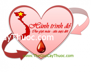 can-dan-cua-thay-thuoc-voi-nguoi-hien-mau-Thongtinbenhcom