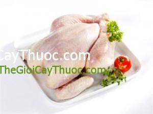 thuc-pham-cho-nguoi-mau-nhiem-mo-thongtinbenhcom6