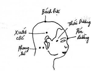chua-roi-loan-tien-dinh-bang-y-hoc-co-truyen-1