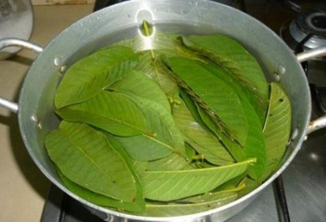 bai-thuoc-chua-tieu-duong--on-dinh-duong-huyet-bang-la-oi_3160427